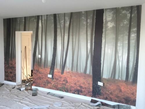 feature wallpaper