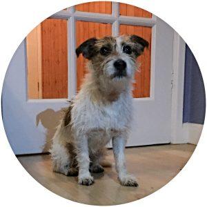 Lexie Profile Image